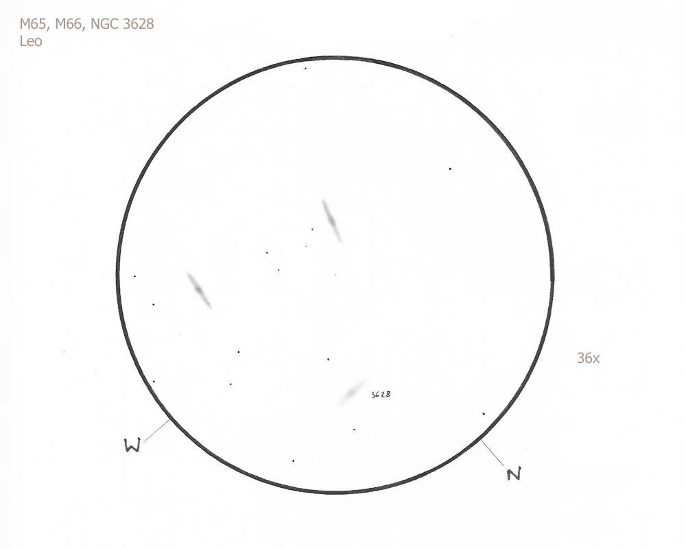 """M65 and M66/Leo, 8.75"""" f/4.5 Newtonian, 36x, W"""
