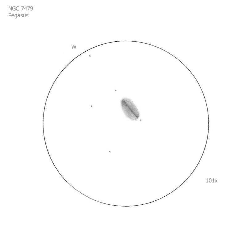 """NGC 7479/Peg, 12"""" f5 Dob, 101x, 6.5/II/II, S"""
