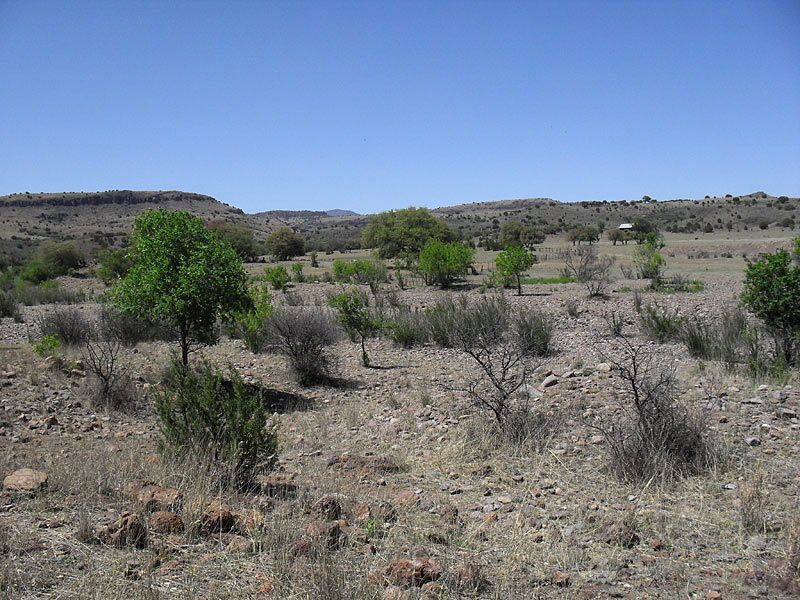 Spent an afternoon birdwatching around the ranch. This is the scenery north of the ranch.