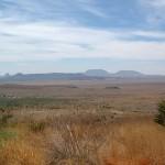 Texas scenery