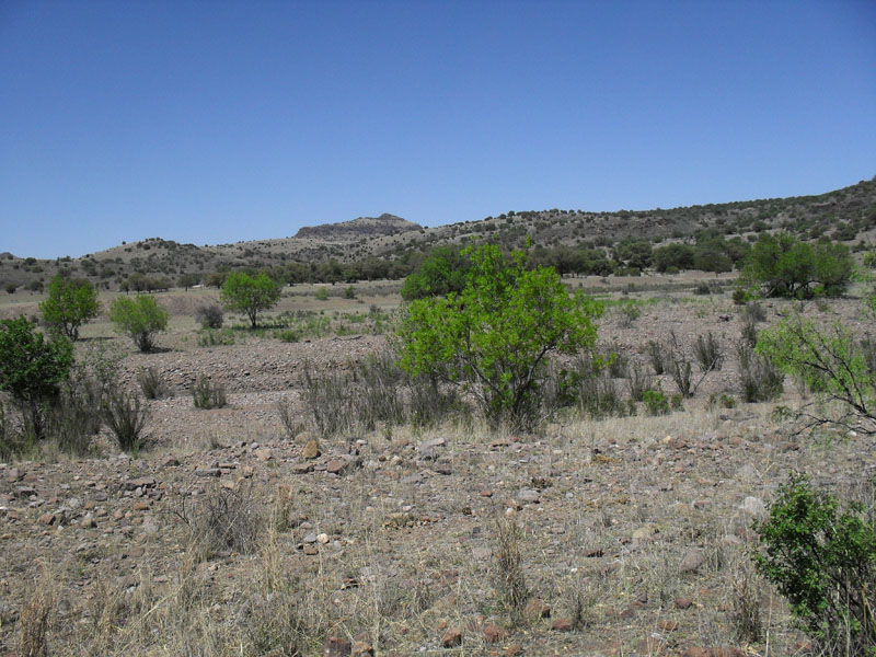 Scenery to the north east of the ranch